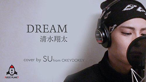 DREAM / 清水翔太